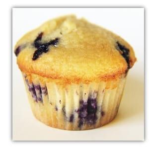 fbk muffin10b