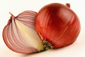 onions are a superfood